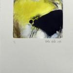 Monotype NY'92 B
